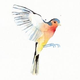 Conrad Roset 飞鸟