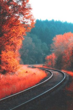 诗和远方系列(01)|秋色