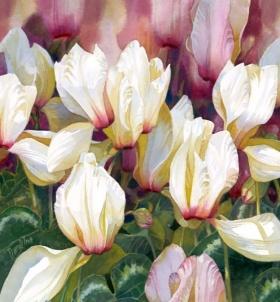 Darryl Trott 绘画作品 |花