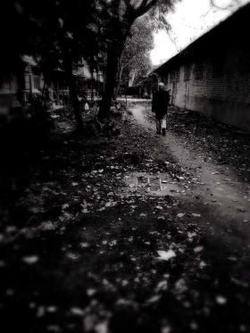 我在北平#悲了秋#