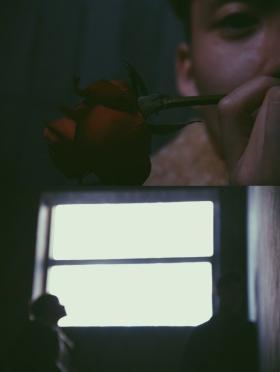 花与少年。