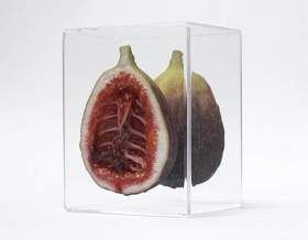 Monica Piloni雕塑艺术 | 水果里的骨头