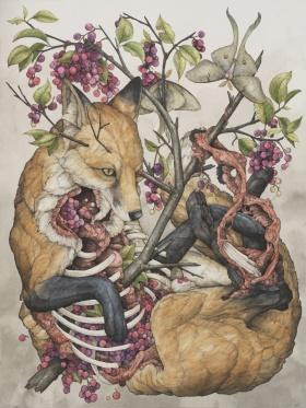Lauren Marx | 动物插画