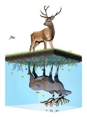 Josh Keyes关于生态的超现实主义绘画