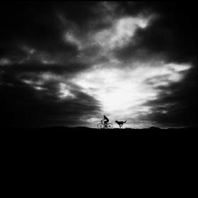 真正的孤独是你所不擦觉