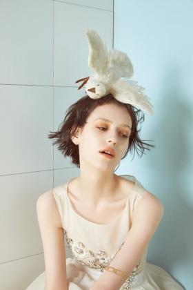 羽毛美丽的鸟