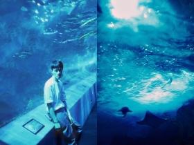 深海少年-。