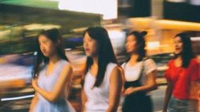 失焦系列——台风后厦门的街