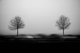 Yannick Cordemy 黑白影像