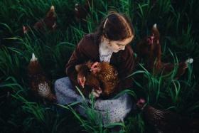 鸡的写真|摄影师Michael Georce