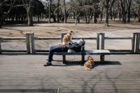 寂寞的东京街头   摄影师Yota Yoshida