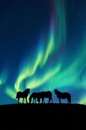 冰岛 |摄影师Dale Sharpe