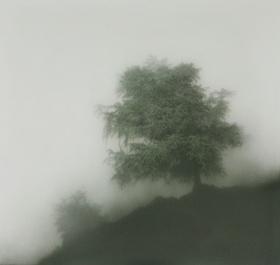 Kibong Rhee 绘画作品