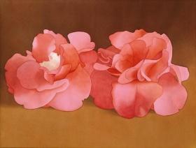 Mark Adams 美国艺术家