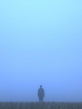 孤独才是生命之常态。