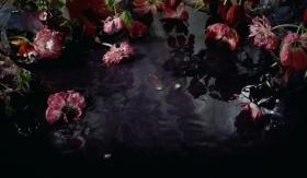 镜花水月  | Margriet Smulders