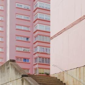 色彩 |David S. Berini