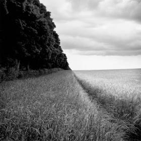 诗意的乡村风景 |摄影师Paul Hart 