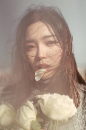 白色玫瑰与你