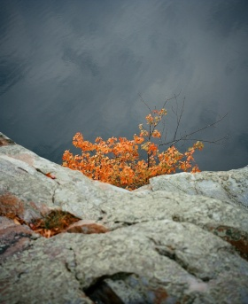 Aeran Squires Photography