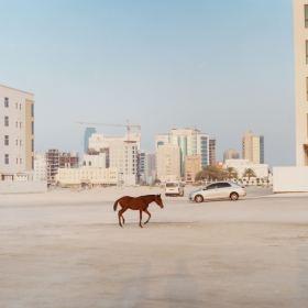 舒适的色调 | Toby Coulson摄影作品 