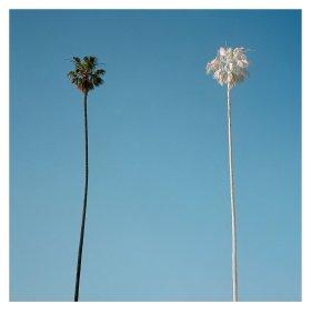 彩色的洛杉矶 | George Byrne