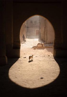 摩洛哥   摄影师Bas Hordijk