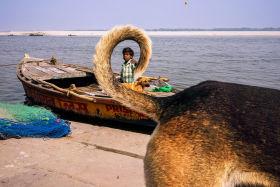 瓦拉纳西的生活影像 | 摄影师Dan Morris 