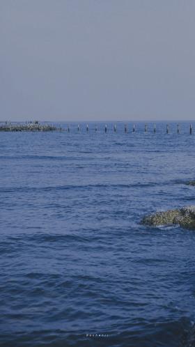 看海的时候