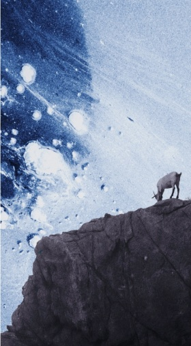 A Goat in Blue | 重置的山羊