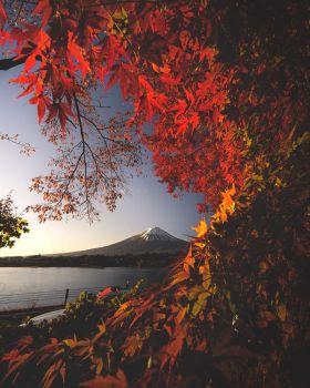 秋 | 日本摄影师 Hiro Goto