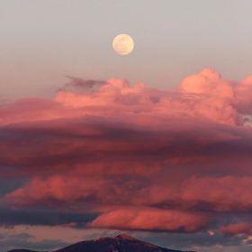 云和月 | Francesca Cecili