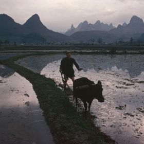 广西,1980 | 玛格南摄影师Bruno Barbey ????