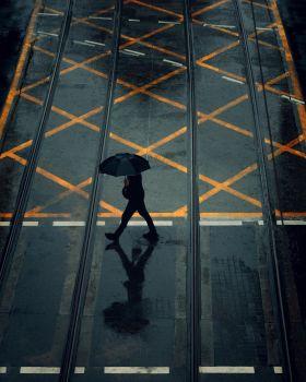 雨中的城市 | David Sark