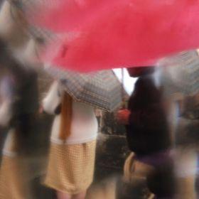 獨特視角 | Sarah van Rij鏡頭里雨天的街頭