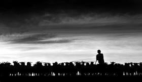 特兰西瓦尼亚牧羊人| 摄影师Istvan Kerekes