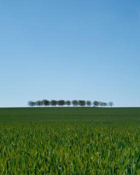 静谧的风景 | Laetitia Modine